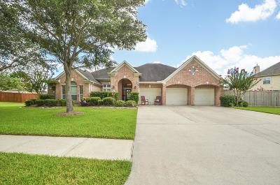 Friendswood Single Family Home For Sale: 1619 Mossy Stone Drive