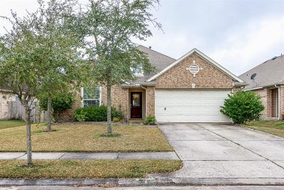 League City Single Family Home For Sale: 873 Falling Springs Lane