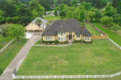 Tomball Single Family Home For Sale: 13515 Boudreaux Estates Drive