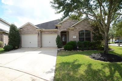 Sugar land Single Family Home For Sale: 4011 Wolf Springs Court
