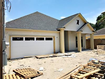 Houston Single Family Home For Sale: 3904 Elysian Street