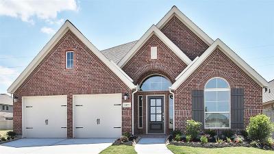 Manvel Single Family Home For Sale: 4405 Mesquite Terrace Drive