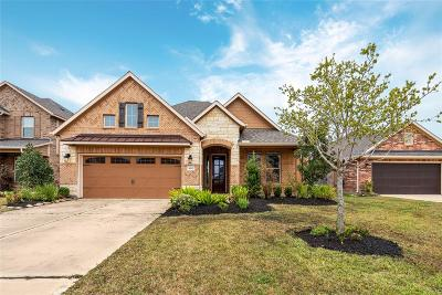 Pearland Single Family Home For Sale: 3605 Bosc Drive