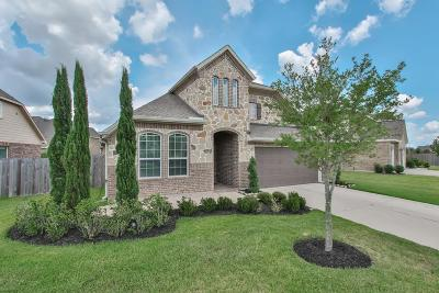 Fort Bend County Single Family Home For Sale: 3339 Windsor Ranch Ln