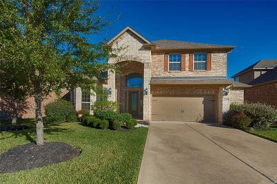 Houston Single Family Home For Sale: 17706 Eavesdown Court