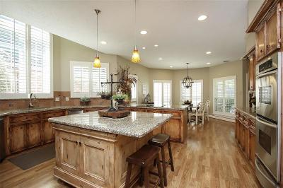 Spring Single Family Home For Sale: 17727 Shadow Valley Drive