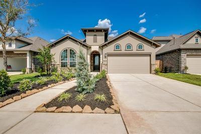 Missouri City Single Family Home For Sale: 2422 Jasper Point