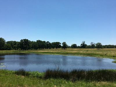 New Ulm TX Farm & Ranch For Sale: $728,805