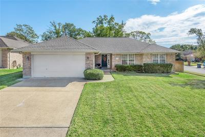 Madison County, Brazos County Single Family Home For Sale: 6200 Queenslock Circle