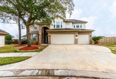 Pearland Single Family Home For Sale: 11602 Park Falls Court