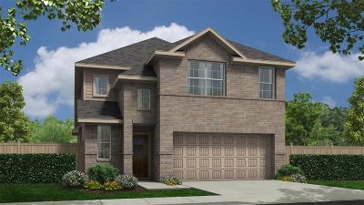 Katy Single Family Home For Sale: 24810 Puccini Place