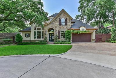 Houston Single Family Home For Sale: 1127 Ben Hur Drive