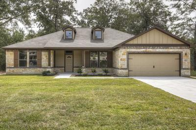 Houston Single Family Home For Sale: 911 Carriage View Lane