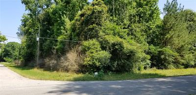Residential Lots & Land For Sale: Tba Spring Ave