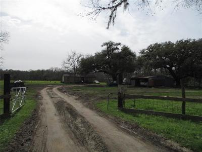 Sweeny Single Family Home For Sale: 9678 Fm 524 Road