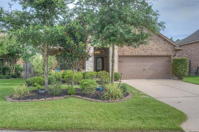 Montgomery TX Single Family Home For Sale: $310,000