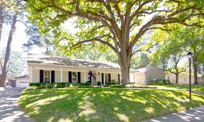 Houston Single Family Home For Sale: 1207 Briarpark Drive