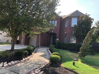 Pearland Single Family Home For Sale: 2302 High Tide Lane Lane
