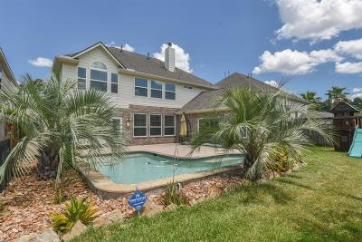 Single Family Home For Sale: 5327 Brookway Willow Drive