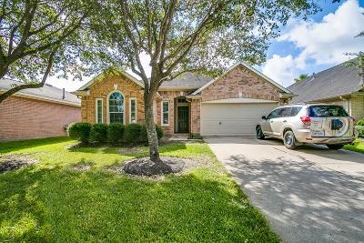 Houston Single Family Home For Sale: 9214 Filaree Ridge Lane