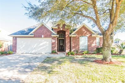 Houston Single Family Home For Sale: 10339 Claybrook Drive