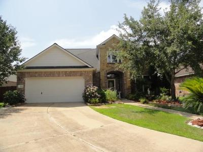 Katy Single Family Home For Sale: 23166 Tranquil Springs Lane