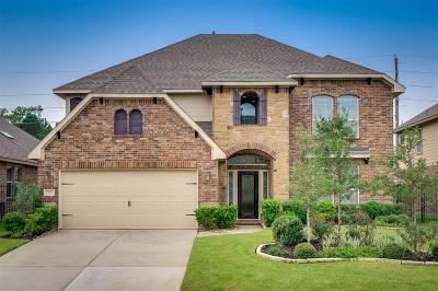 Tomball Single Family Home For Sale: 107 Wading Pond Circle