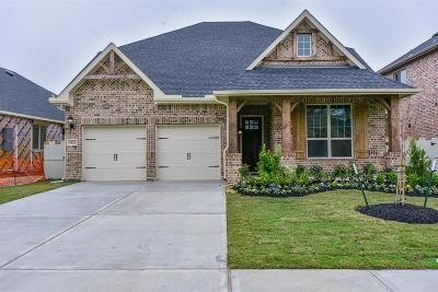 Conroe Single Family Home For Sale: 9828 Sweet Flag Court