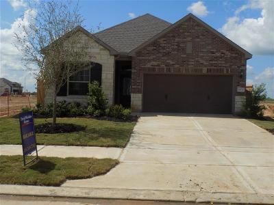 Fulshear Single Family Home For Sale: 30319 Aster Brook
