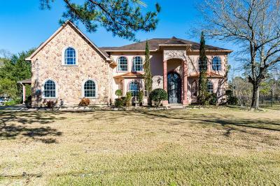 Single Family Home For Sale: 4618 Raccoon Drive