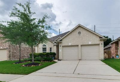 Tomball Single Family Home For Sale: 10034 Taylor Springs Lane
