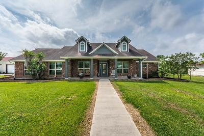 Alvin Single Family Home For Sale: 5189 County Road 435