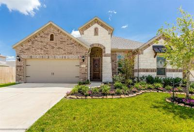 Katy Single Family Home For Sale: 3822 Moreland Branch Lane