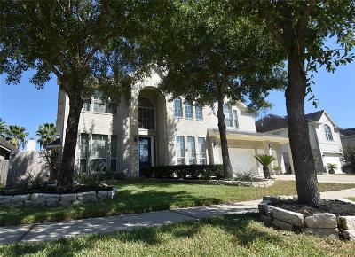 Tomball Single Family Home For Sale: 12011 Canyon Star Lane