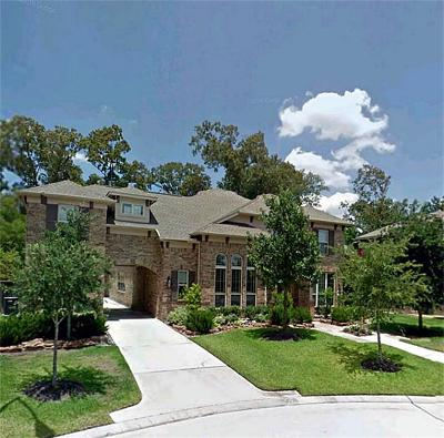 Houston Single Family Home For Sale: 1318 Regal Shores Court