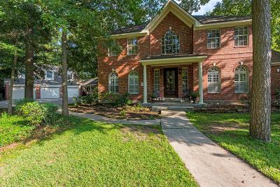 Conroe Single Family Home For Sale: 178 Lake View Circle