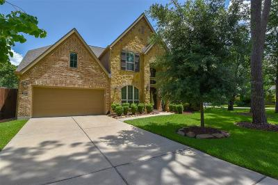 Houston Single Family Home For Sale: 1802 Althea