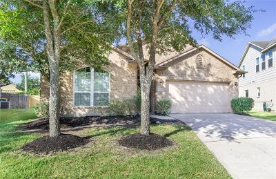 Shadow Creek Ranch Single Family Home For Sale: 13116 Shallow Falls Lane