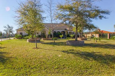 Montgomery Single Family Home For Sale: 498 Royal Navigator Road
