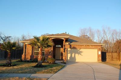 Spring Single Family Home For Sale: 18726 Richland Falls Lane