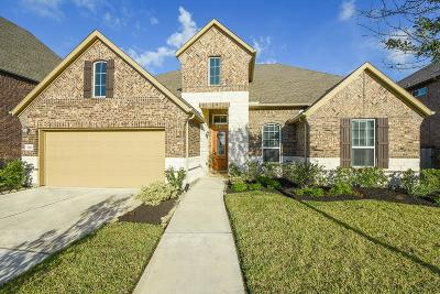 Pearland Single Family Home For Sale: 3021 Rocky Point Drive