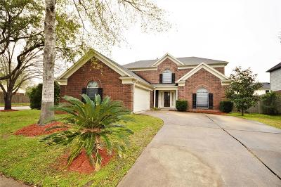 Pearland Single Family Home For Sale: 4001 Ivywood Drive
