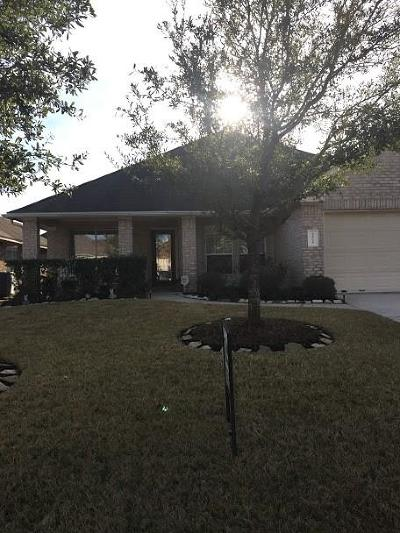Tomball Single Family Home For Sale: 22915 Lily Creek Drive