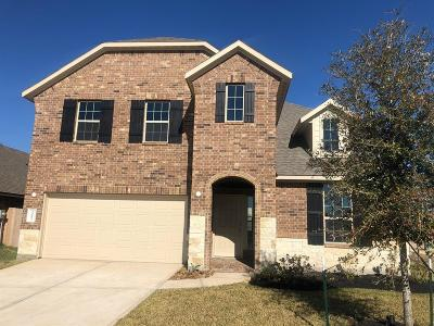 Single Family Home For Sale: 23802 Tribano Court