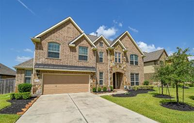 Tomball Single Family Home For Sale: 18719 Hardy Trace Dr Drive