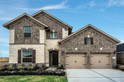 Pearland Single Family Home For Sale: 7704 River Pass Drive