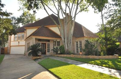 Katy Single Family Home For Sale: 20211 Cadogan Court