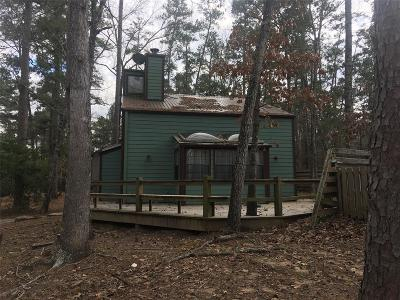 San Jacinto County Single Family Home For Sale: 25 Putters Point W
