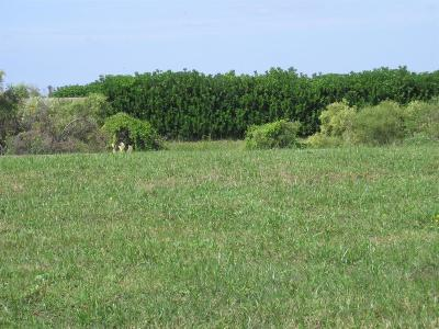 Galveston Residential Lots & Land For Sale: 25610 Spotted Sandpiper Drive