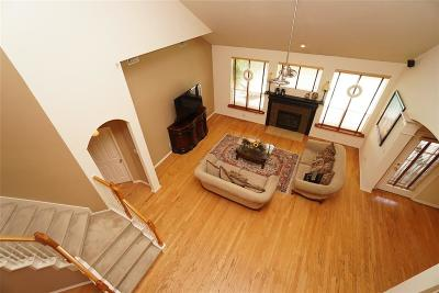 Katy Single Family Home For Sale: 3303 Canyon Links Drive